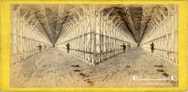 Stereoview of the walkway under the railway suspension bridge at Niagara Falls